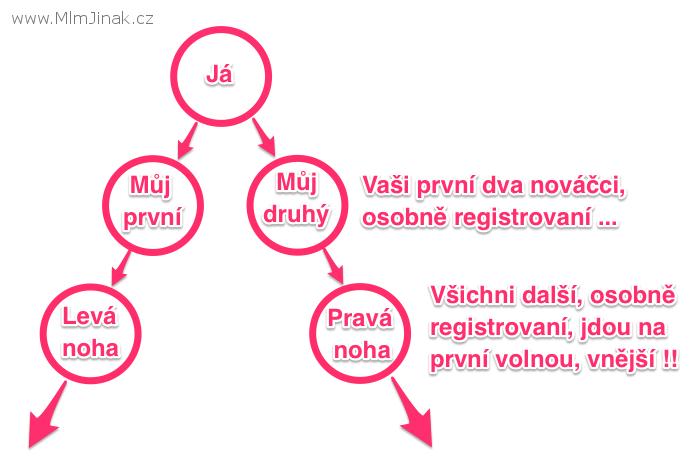 Jak skládat a řadit do bináru své přímé distributory - MLMjinak.cz