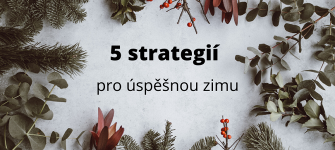 5 strategií